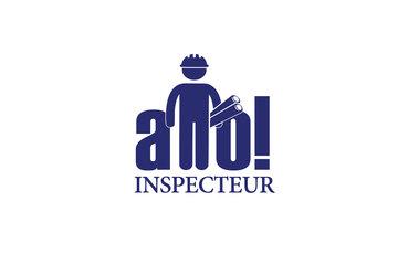 Allo Inspecteur