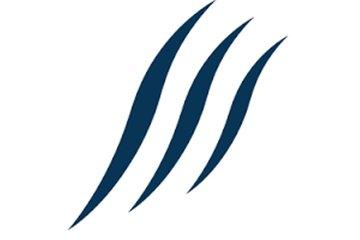 Search Shark - SEO Company & Services Saskatoon