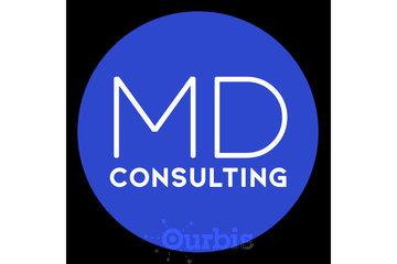 Michael Di Re Multi-Channel Consulting