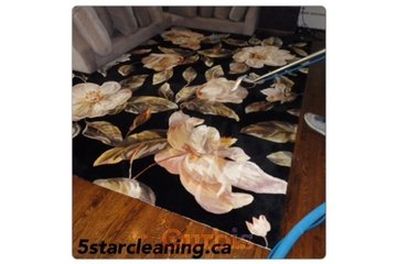 Five Star Rug & Carpet Cleaning&24/7 Flood Emergency company in Richmond Hill: Steam green cleaning services