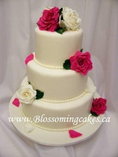 Occasion Cakes Ottawa