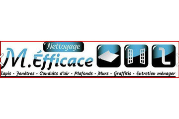 M. EFFICACE / MR. EFFICIENT