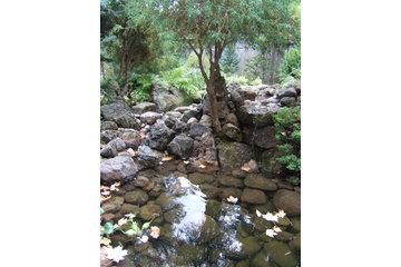 Forestell Designed Landscapes in Ottawa: Natural Water Garden