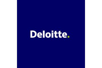 Bankruptcy Prince Albert | Deloitte