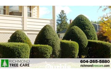Richmond Tree Care