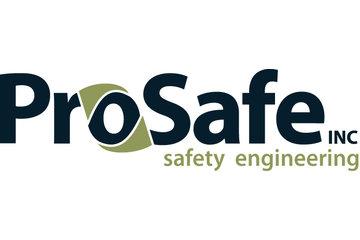 ProSafe Inc