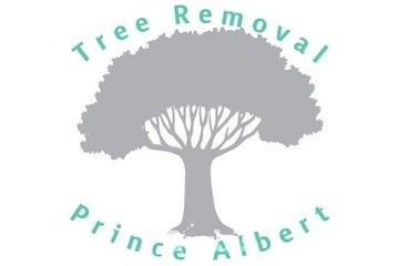 Tree Removal Prince Albert