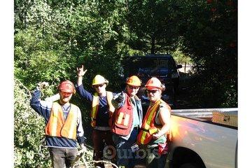 ArborCare Tree Service in Kelowna