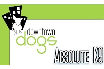 Downtown Dogs- Metro/Absolute K-9