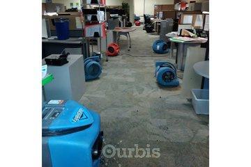 Flood Doctor Inc. in toronto: besmet service