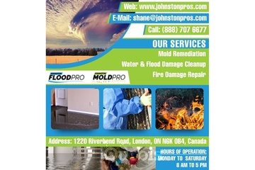 Mold Remediation London | Johnston Pros - Mold Pro and Flood Pro