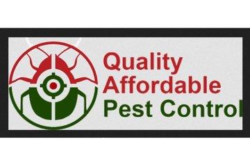 Q.A.P pest control