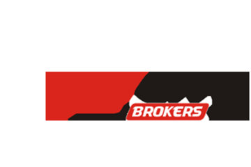 Bay City Brokers Ltd