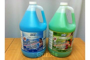 Produits Sanitaires Industriels Dami Inc in Sainte-Catherine: 3 EN 1