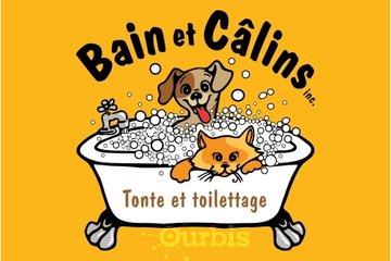 Bain et calins - Tonte et toilettage