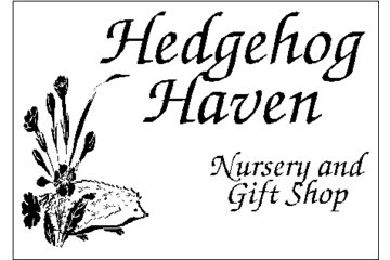Hedge Hog Haven Nursery