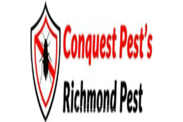 cockroach Removal In Richmond