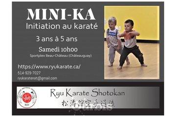 Ryu Karaté Shotokan à Chateauguay: Cours pour les enfants de 3 ans à 5 ans, apprendre par le jeu pour bien évolué.