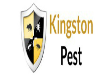 Pest Control Kingston