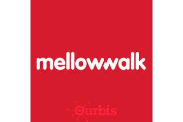 Mellow Walk Footwear