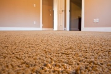 Giant Carpet & Flooring in Barrie