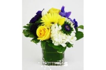 Flower Creations in Mississauga: Canada Florist