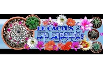 Cactus Fleuri Inc