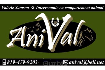 AniVal