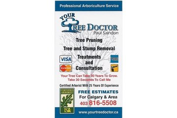 Your Tree Doctor