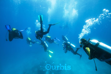 Worldz2c SCUBA Diving, Travel & Leisure Directory in Montréal: Scuba Diving at Worldz2c
