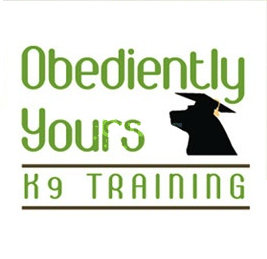 Dog Obedience Training Vancouver Wa