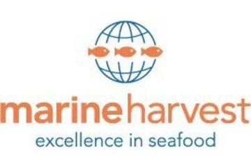 Marine Harvest Canada in Campbell River: Marine Harvest Canada