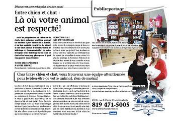 Entre Chien Et Chat à Drummondville