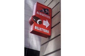 Les Alouettes de Montréal à Montréal