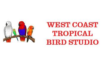 West Coast Tropical Bird Studio Inc in Vancouver