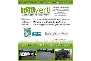Toitvert