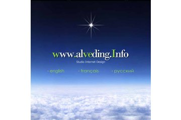 Alveding - Studio Internet Design