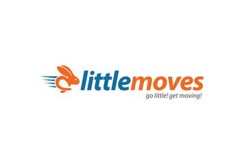 Little Moves