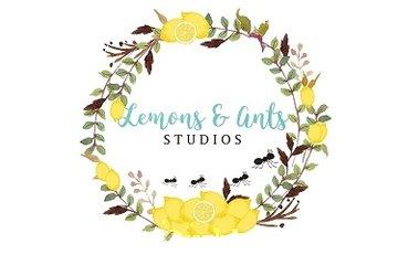 Lemons and Ants Studios