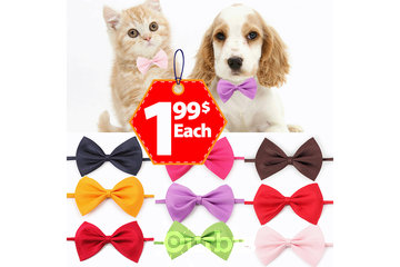 Peppy Collection Club in Montreal: Pets Bowtie at 1.99$