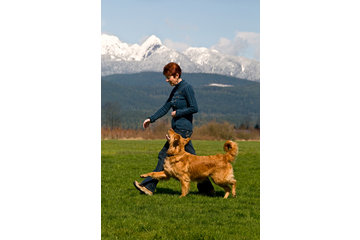 TNT Kennels in Abbotsford: Owner Janice Gunn with Top Competition Dog Raisin
