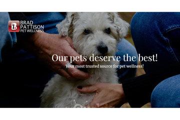 Brad Pattison Pet Wellness