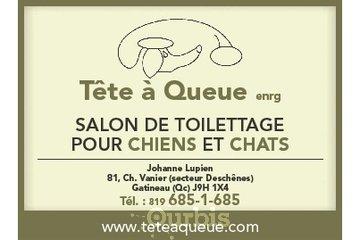 Salon de Toilettage Tête à Queue