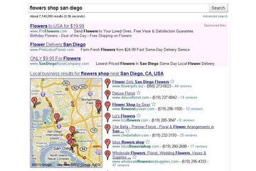 Google Local listings consultings