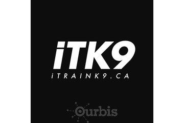 iTrainK9 Dog Training