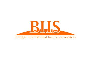 Bridges International Insurance Services