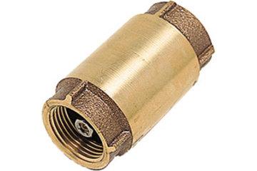 Dubois Agrinovation in Saint-Rémi: brass check valve