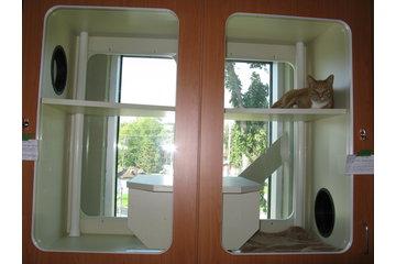 Animal 911 Hôpital Vétérinaire à Roxboro: windowed multilevel cat condos/des condos vitre pour chats