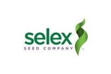 Selex Seeds