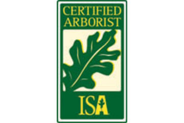 Arbor Pro Tree Services Ltd